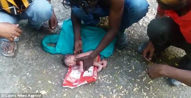 bé gái bị bỏ rơi trong túi bóng, bé gái bị kiến bu, bé gái bị bỏ rơi kiến bu đầy
