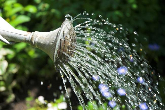 Mơ thấy vòi nước