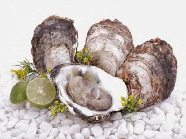 Top 5 thực phẩm giúp tăng cường sinh lý cho phái mạnh