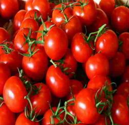 Tổng hợp các tác dụng của cà chua đối với sức khỏe